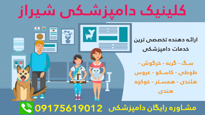 shiraz veterinary clinic